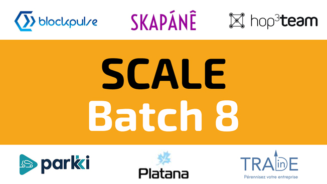 SCALE : Batch 8